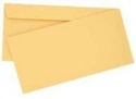 DL Envelopes Other