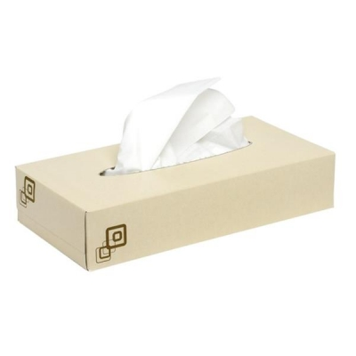 Luxury Facial Tissues 2 Ply 100 Sheets [Pack 36]