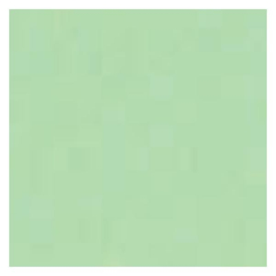 5 Star Copier Paper Tinted 80gm A4 Bright Green [500 Sheets]